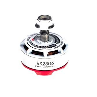 EMAX RS2306 Racing Motor