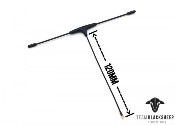 TBS Immortal T V2 Extended Antenne